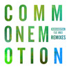 Rudimental Ft Mnek Common Emotion The Golden Pony Remix Mp3