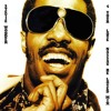 Stevie Wonder - For Your Love ( NASSAU Re - Loved Mix )