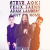 Steve Aoki & Felix Jaehn -  Can't Go Home Feat Adam Lambert