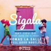 Say You Do (Thomas La Salle's Feel Good Bootleg) [Free Download]