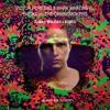 Victor Porfidio & MM x Skidka x Rozes - Zuma x Wulkan x Roses (Dannic Mashup) (B-Rather Re-Edit)