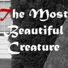 """""""The Most Beautiful Creature"""" by Mr. Major   Creepy Pasta Readings"""