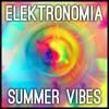 Elektronomia - Summer Vibes