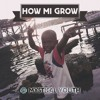 MYSTICAL YOUTH SOUND - HOW MI GROW (Dancehall Mix 2016)