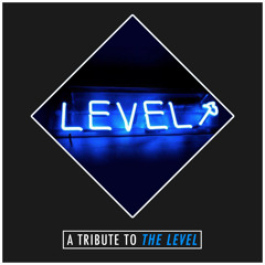 A Tribute To The Level Part I