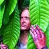 Episode 33 Joseph Simcox - The Botanical Explorer & the Gardens Across America Project