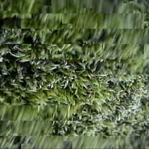 Galerie Entrance: Láva a mech, Steina Vasulka (Lenka Dolanová)