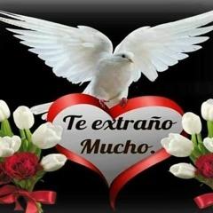 Yo Te Amo Jesús NANDITO CAYO