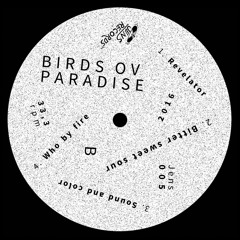 Birds Ov Paradise - JENS005 B1. Sound And Color