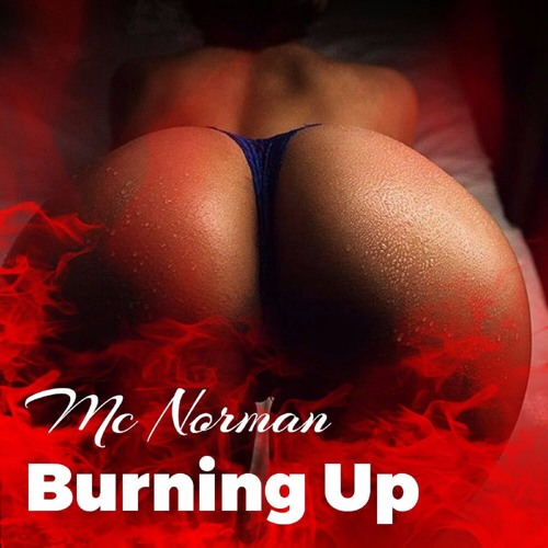 MCNORMAN - BURNING UP