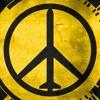 Metal Gear Solid Peace Walker Reinterpreted