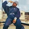 2Pac - Thug 4 Life