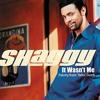 Shaggy - It Wasn't Me (Jamie James Remix) Free Download!