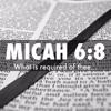 Micah 6 8 He Has Shown Us 3 20 2016 Pastor Tyler Stclair Mp3