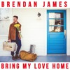 Free Download Brendan James - Bring My Love Home Mp3