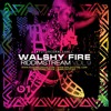 Walshy Fire Dancehall Mix - Riddimstream Vol 9 - RS9 - March 2016