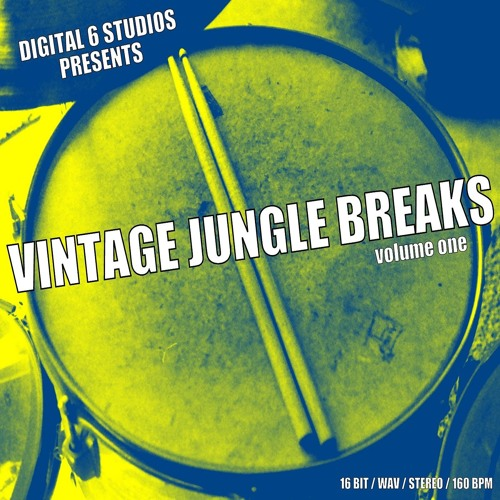 VINTAGE JUNGLE BREAKS Sample Pack (Demo)