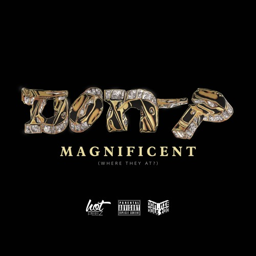 Don P [Donnie Houston + Hot Peez] - Magnificent (Where They At?)