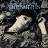Last Night I Dreamt That Somebody Loved Me (Smiths Cover) by Dala