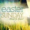 Easter Vigil Mass - Fr. Joe Barr