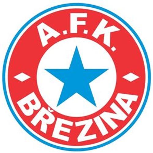 Hymna AFK Březina