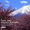 Download Para One Spring Mixtape on Rinse FR 29/03/16 Mp3