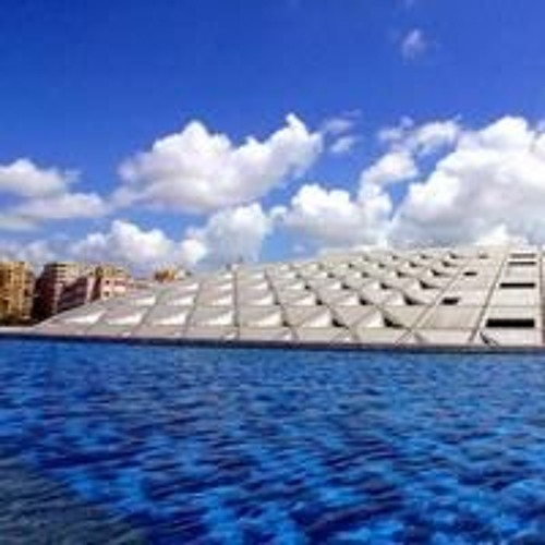 Rebirth And Revolution: The Story Of The Bibliotheca Alexandrina