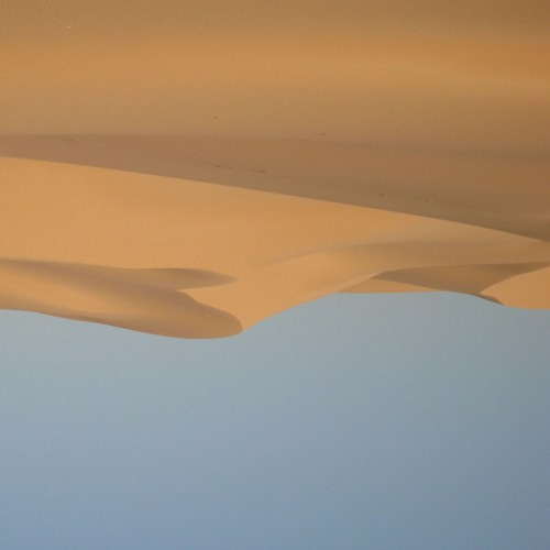 'The Desert in Today's Cinema' by Bruce McClure & Bjørn Hatleskog