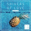 FDVM - Shivers Of Love (Bootleg)