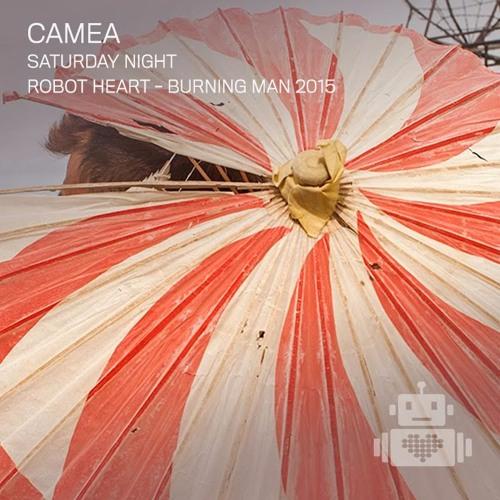 Camea Robot Heart Burning Man 2015
