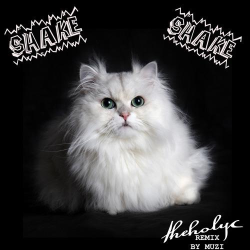 TheHolyC - Shake Shake (Remix)