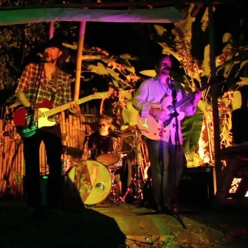 Got This Feelin'  - Carlos Elliot Jr. & The Cornlickers