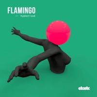 Flamingo - Hypnotised