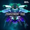 Transcendent Trap 2 Demo ---Hybrid, Liquid and Midtempo Chill Trap mp3