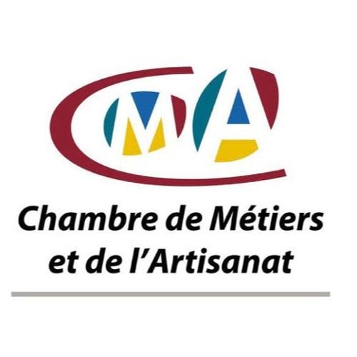 Mme Isabelle Beauvois Elue De La Chambre Des M Tiers D