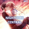 Nightcore - Stitches (Conor Maynard ft. Anth)
