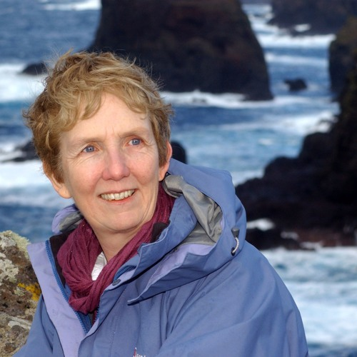 "Interview: ""Shetland"" Author Ann Cleeves"