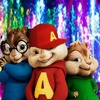 Chipettes - Everywhere You Look