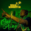 Sean Kingston - One Away  Remix -Dj Cheli