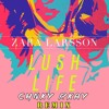Zara Larsson - Lush Life (CHNKY & RKAY Remix)