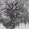 5. Scène 2.3 - La forêt transforme encore - Thème d'Anna