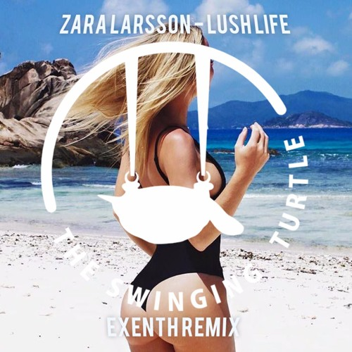 Zara larsson beach