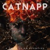 aka Catnapp - Down Ahead