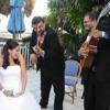 Duo Violin & Guitar - Can't Help Falling In Love By Elvis