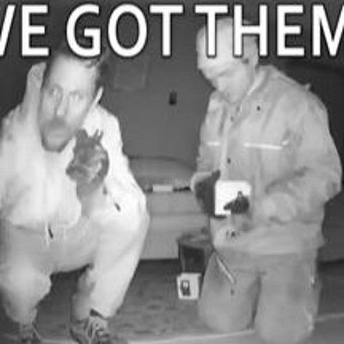 Can You Identify These Thieves? - Monday, April 4th 2016