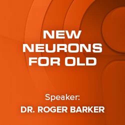 11 New Neurons for Old