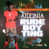 Aidonia - Rude Boy Ting mp3
