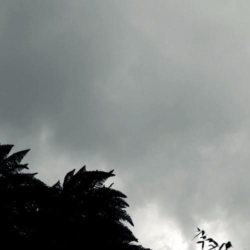 Enclave // Ceguera
