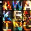 Awakening - Devin Joseph Miller - Chris Tomlin - Hillsong United - Cover
