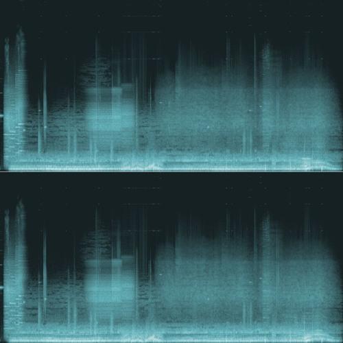 The Quantum Field Trip - Church (Polarized)